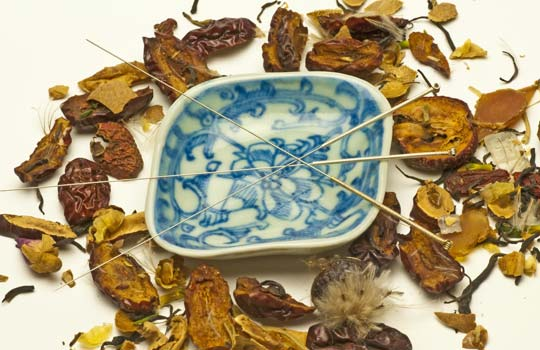 Chinese herbal formula for cold sores quickly